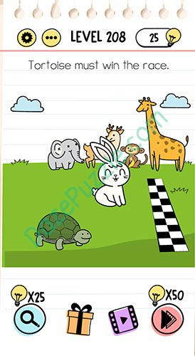 tortoise must win the race brain test