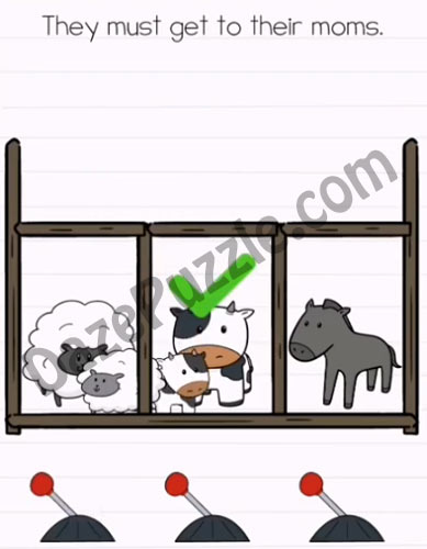 brain test 2 emily's farm level 10 answer