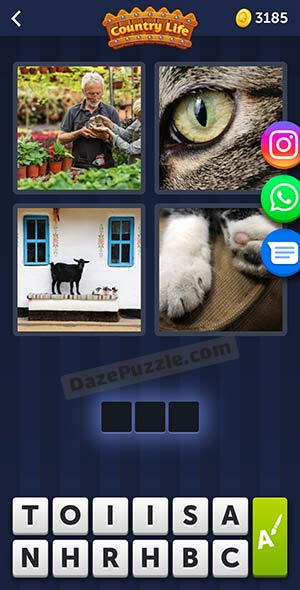 4 pics 1 word may 25 2021 daily puzzle answer